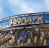 Зоопарки в Анжеро-Судженске