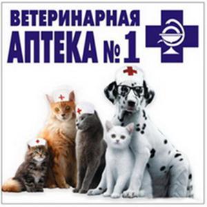 Ветеринарные аптеки Анжеро-Судженска