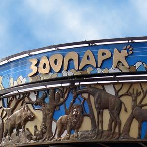 Зоопарки Анжеро-Судженска